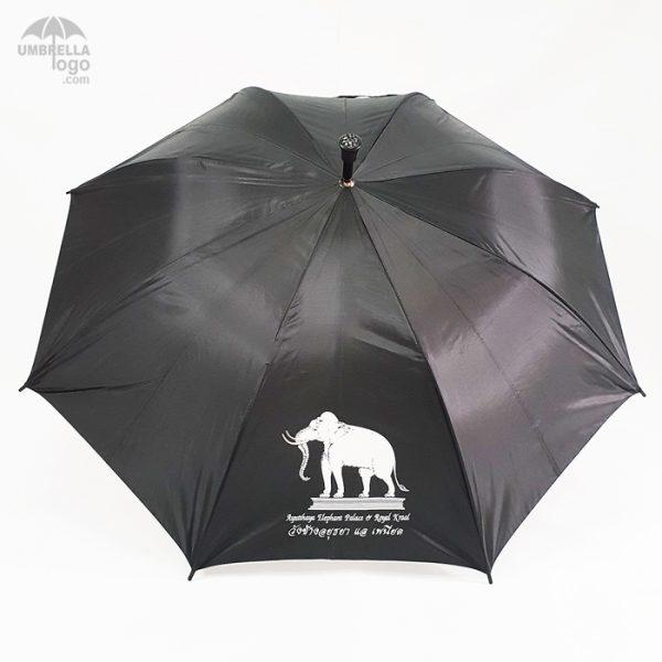ร่มสีดำวังช้างอยุธยา