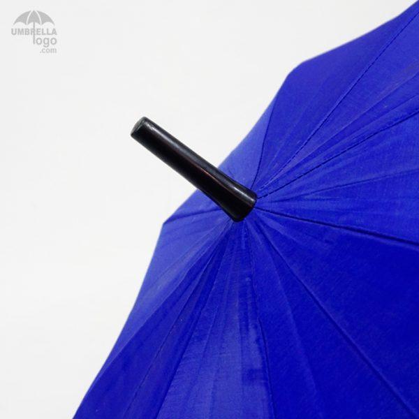 ปลายร่มสีน้ำเงิน