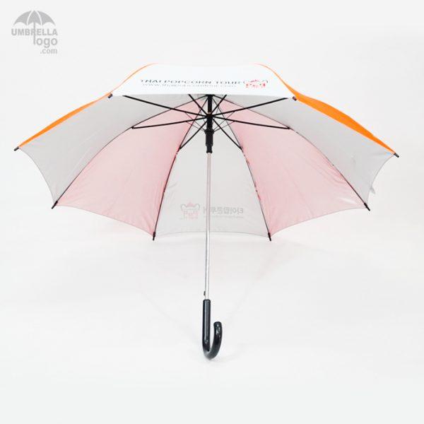 โครงร่มเหล็ก