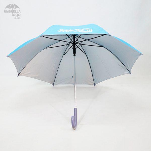 โครงร่มสีฟ้า