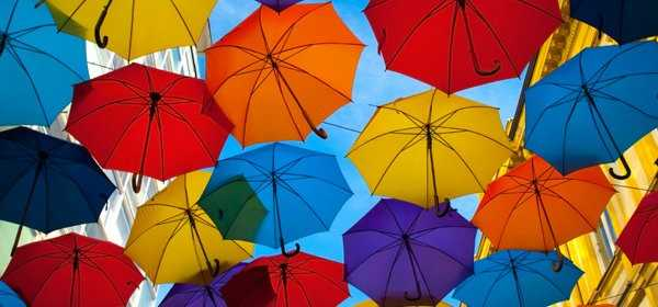 ผลิตร่ม
