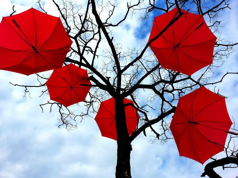 สั่งทำร่มสีแดง